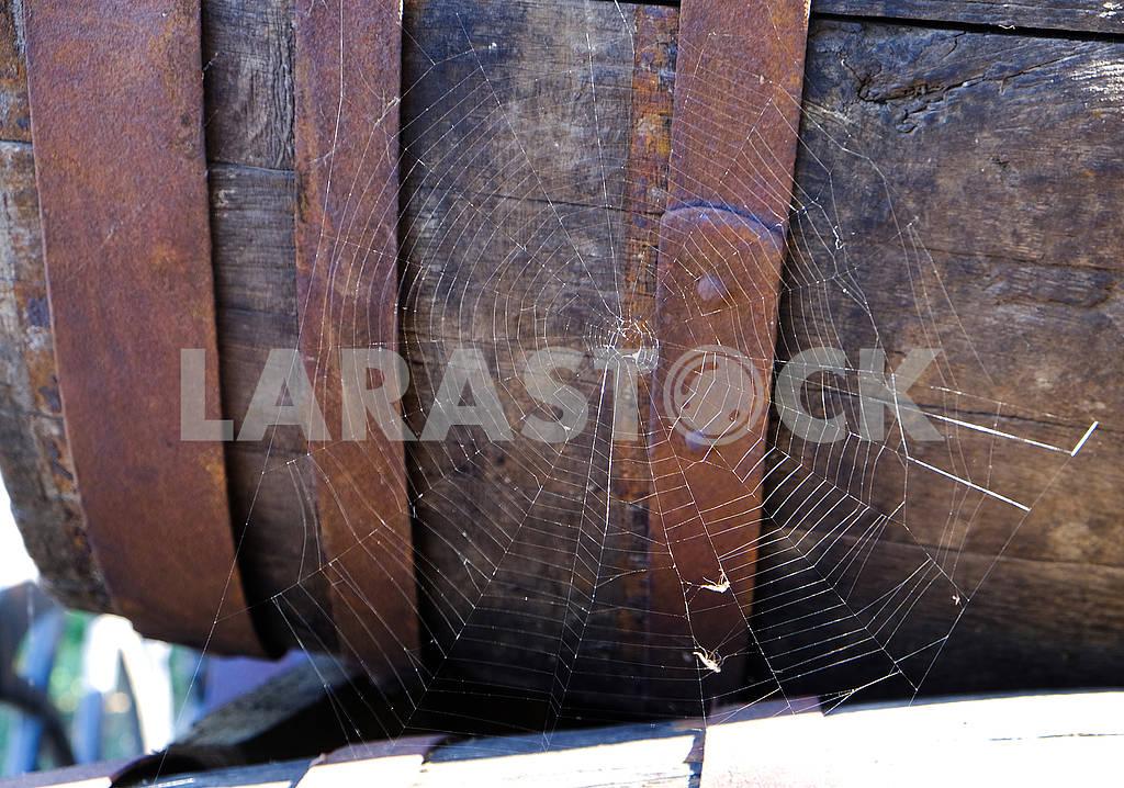 Паутина на фоне бочки — Изображение 61935
