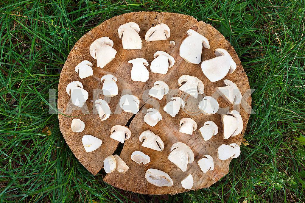 Sliced white mushrooms — Image 62330