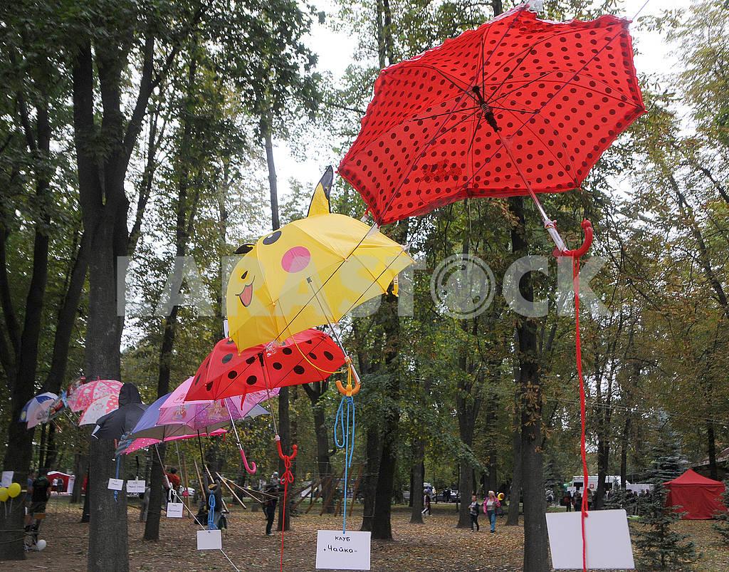Зонтики в Мариинском парке — Изображение 62834