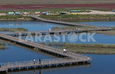 Bridges on the Red Beach