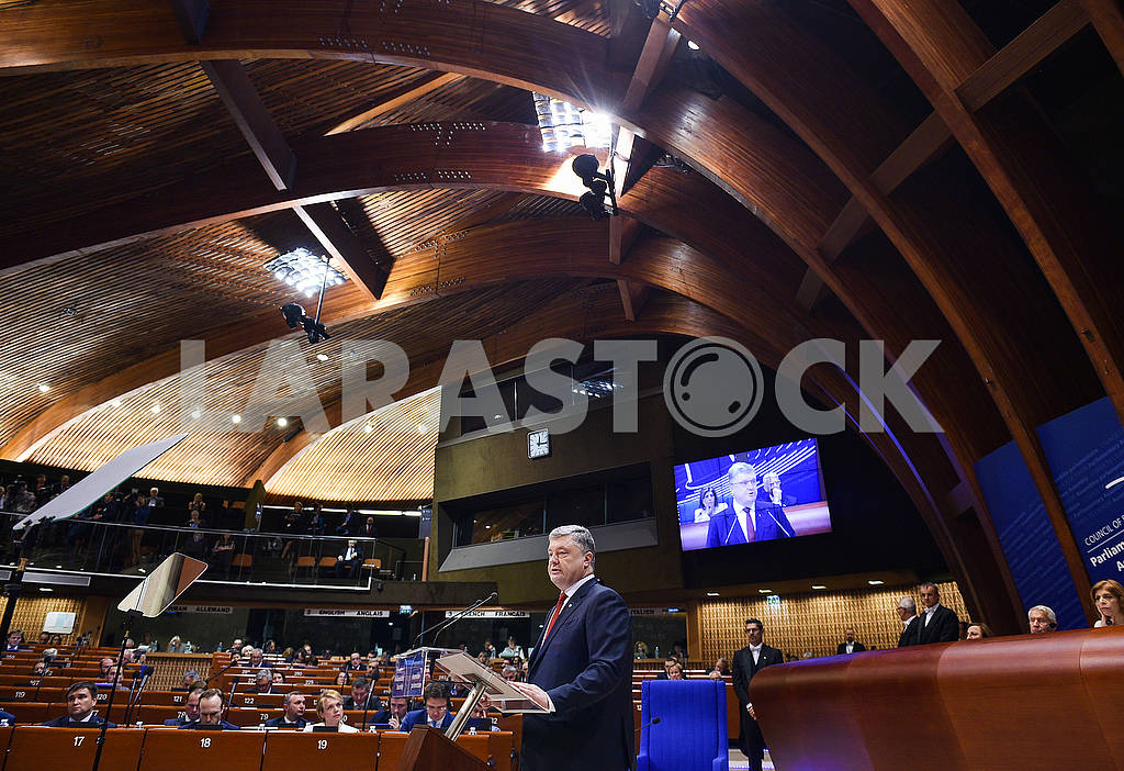 Poroshenko's speech at the parliamentary assembly — Image 63367
