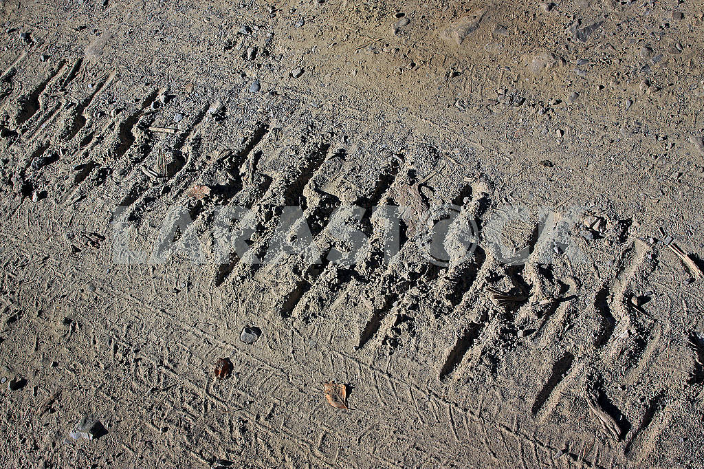 The track from the caterpillar tractor on a dirt road — Image 63718