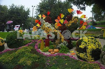 Тыквы на фестивале хризантем