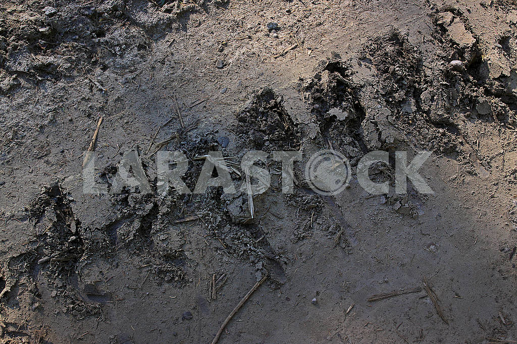 The track from the caterpillar tractor on a dirt road — Image 63901