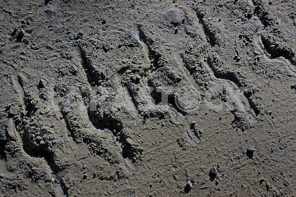 The track from the caterpillar tractor on a dirt road — Image 63902