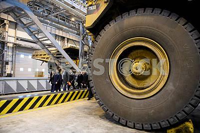 Wheel of Cat