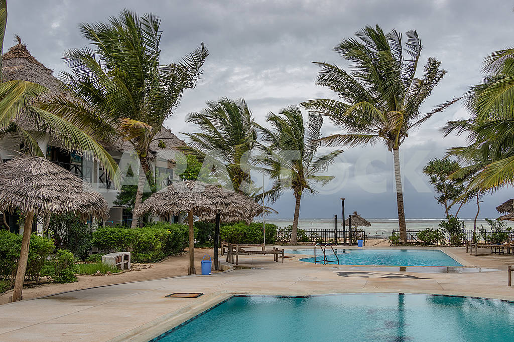 Pool and palm trees in Zanzibar — Image 64333