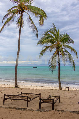 Sun beds on the beach in Zanzibar