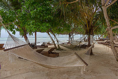 Hammock on the shore of the ocean