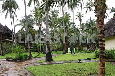 Пляж возле гостиницы на Занзибаре