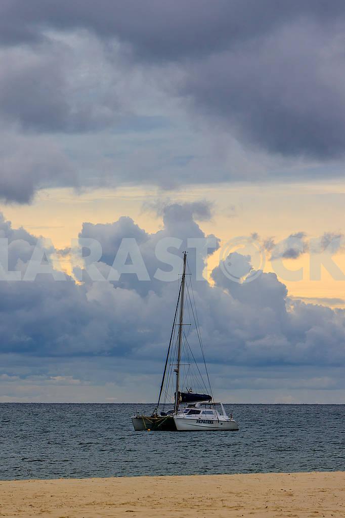 Pleasure catamaran — Image 65201