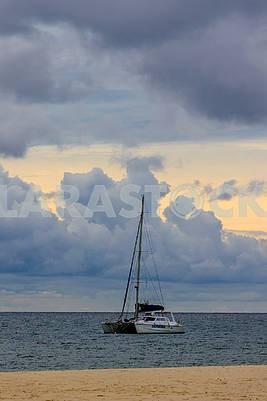 Pleasure catamaran