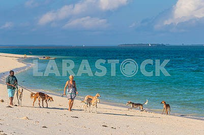 People with dogs on the beach