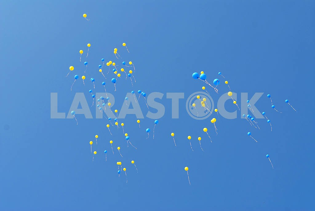 Blue and yellow balloons fly — Image 6587