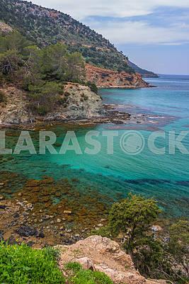 The coast of Cyprus