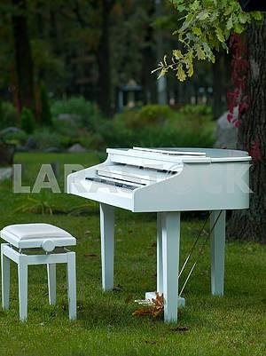White piano in nature