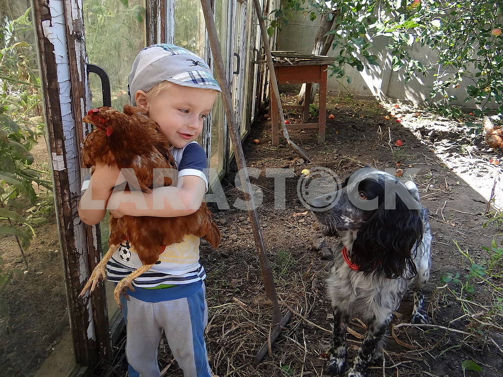 The boy is holding a chicken in his hands. The dog looks at them. — Image 66318