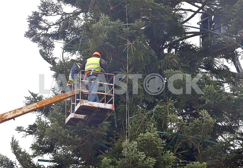 Рабочие в люльке на Софийской площади — Изображение 66385