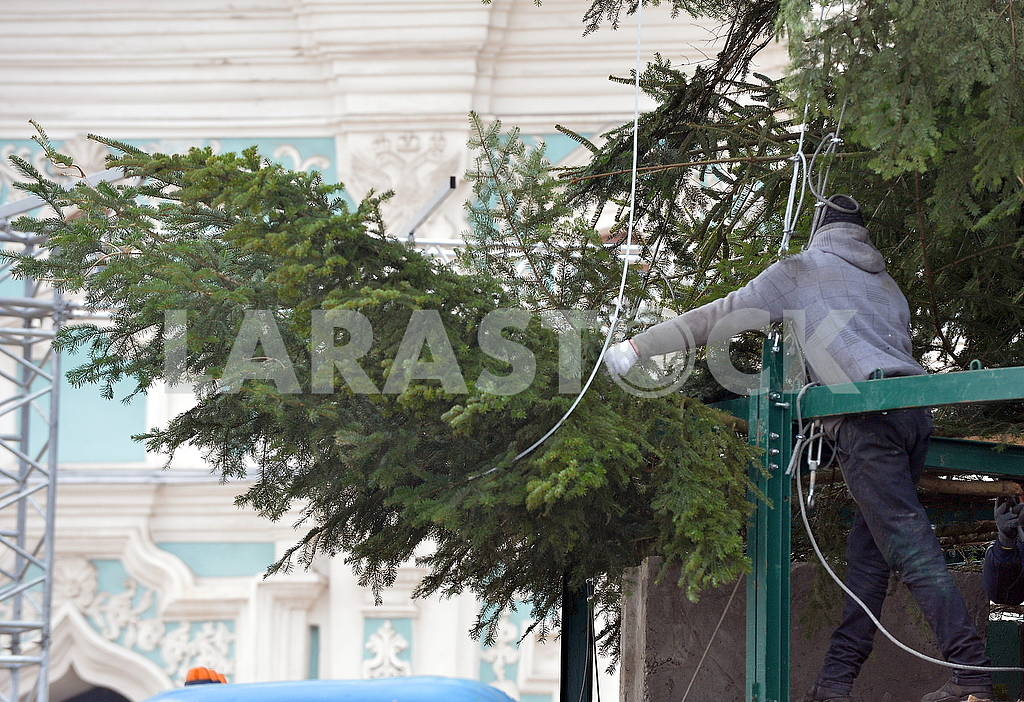 Christmas tree near St. Sophia Cathedral — Image 66387