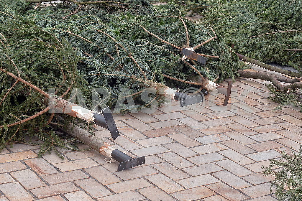 Fixture for Christmas tree branches — Image 66389