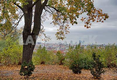 walk to autumn Prague