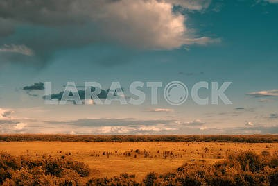 View from the hills to the valley with sparse clouds