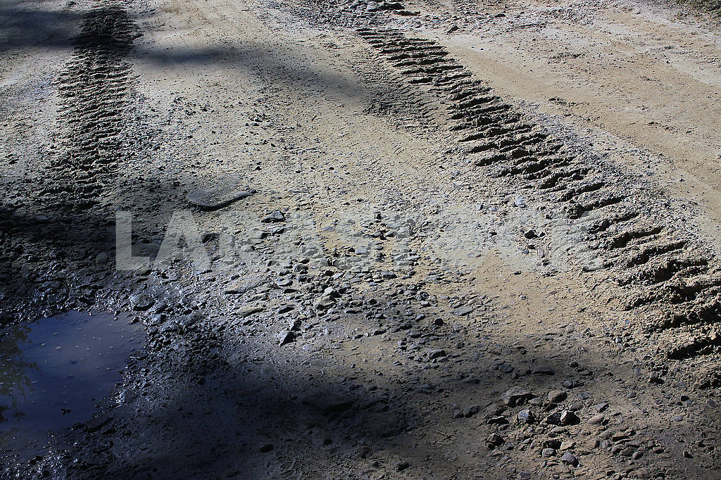 Track from a crawler tractor on a swamp road — Image 67051