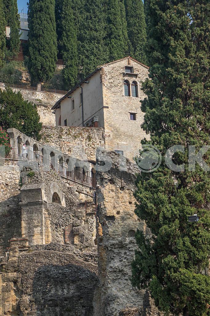 Gardens of Giusti — Image 67162