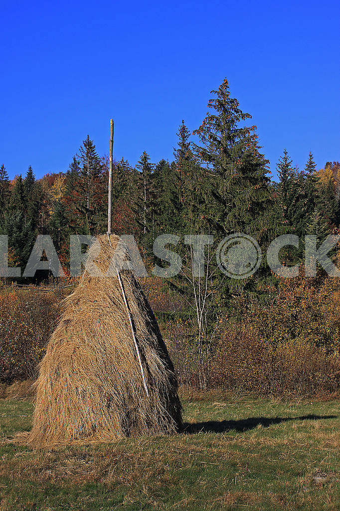 Haystack in glade after reap. — Image 67252