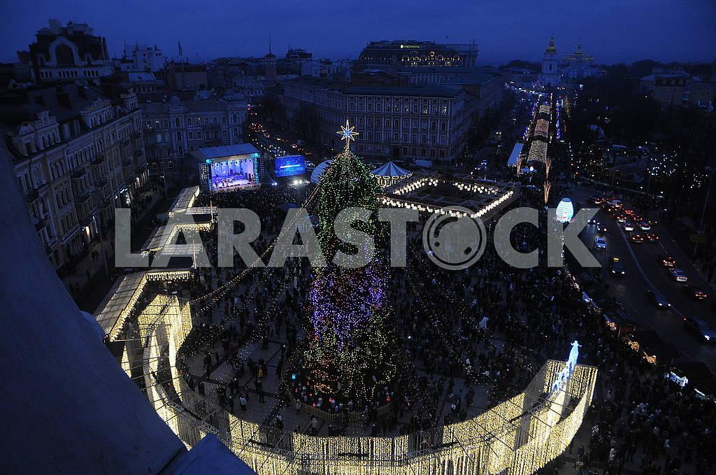 The main Christmas tree in Ukraine — Image 67456
