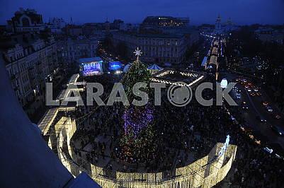 The main Christmas tree in Ukraine