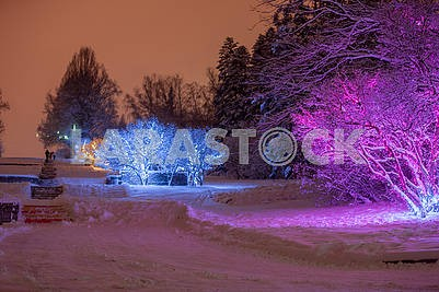Illumination in the National Botanical Garden