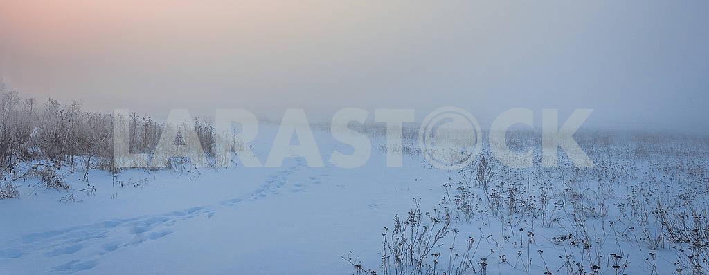 Туманное утро — Изображение 67714