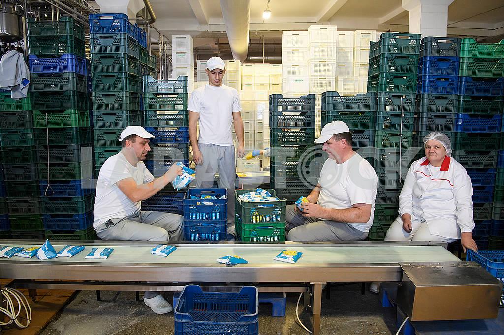 Working on milk packaging — Image 67850