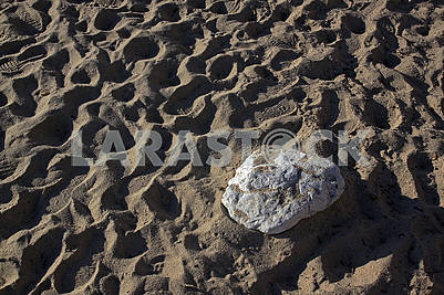 Great lonely stone on the sandy beach