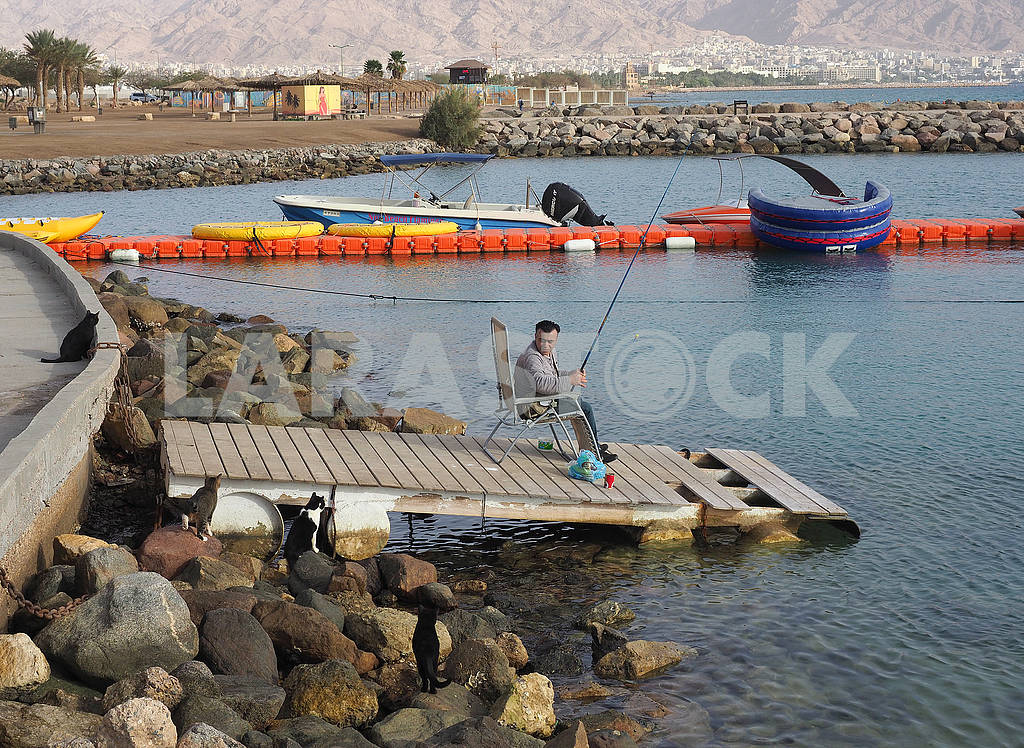 Fisherman on shore — Image 67959