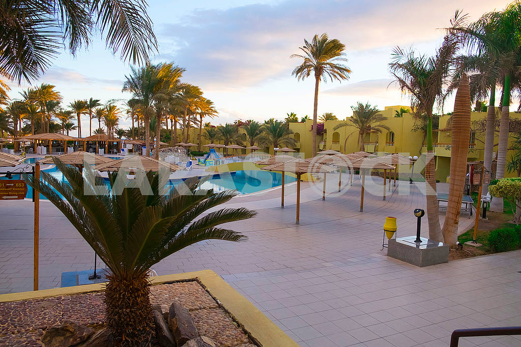 Palms and pool near the hotel — Image 68069