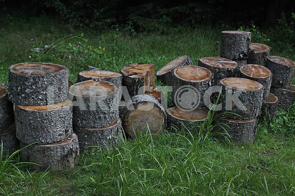 Pile of wood logs — Image 68191