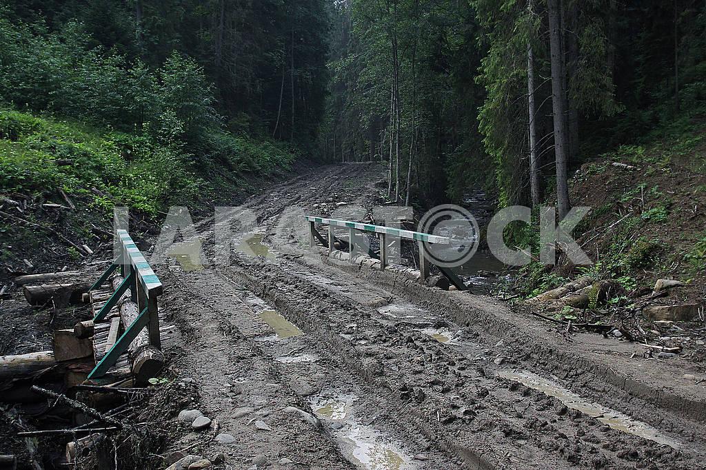 Rural road in the rainy season — Image 68192