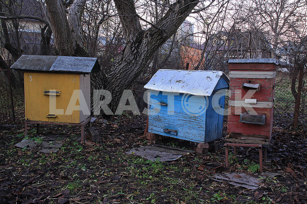 Three colored hive — Image 68232