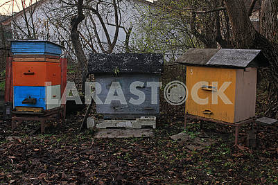 Three colored hives
