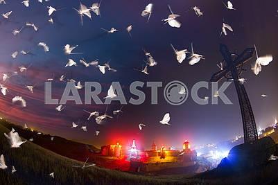 Dance of moths