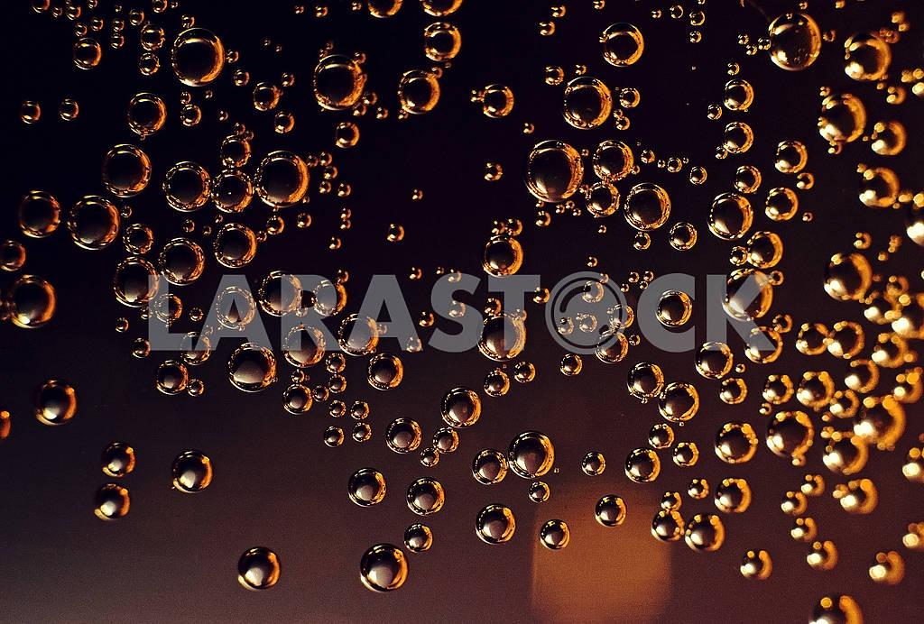 Bubbles — Image 68337