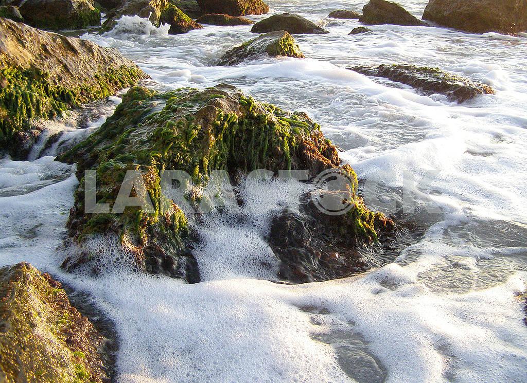Sea foam on the rocks — Image 68403