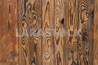 Fragment of a wooden fence