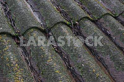 Старая шиферная крыша