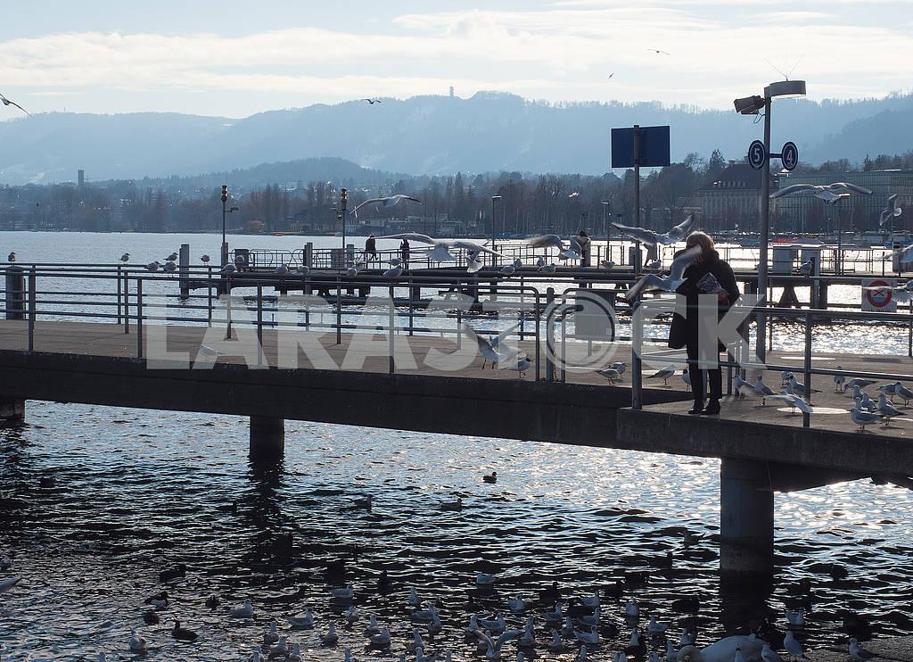 Пирс в Цюрихе — Изображение 68509