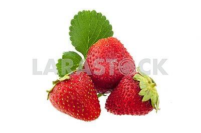 Fresh, delicious ripe strawberries