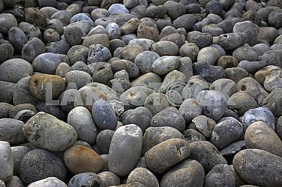 Сірі овальні камені