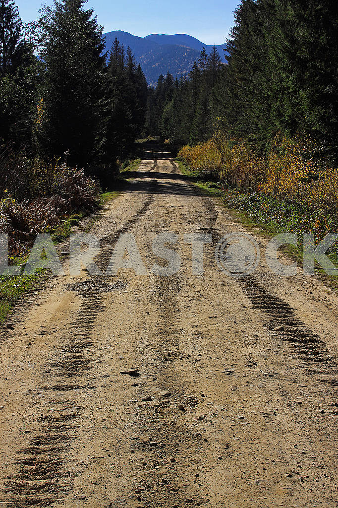 Tracks of a crawler tractor on a dirt road — Image 69814